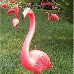 Rotationally-molded-flamingo